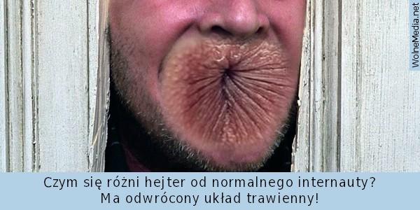 mem-hejter-1.jpg