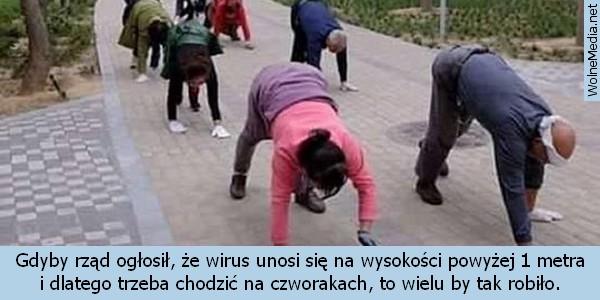 https://wolnemedia.net/obrazki2/mem-posluszenstwo-1.jpg